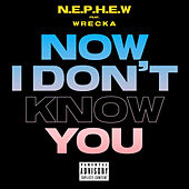 Now I Don't Know You by Nephew