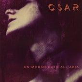 Un morso dato all'aria by C'sar