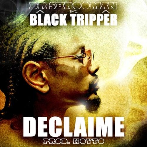 Dr. Shrooman AKA Black Tripper (Prod. KOYTO) by Declaime