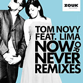 Now Or Never 2011 von Tom Novy
