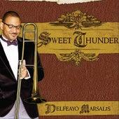 Sweet Thunder by Delfeayo Marsalis