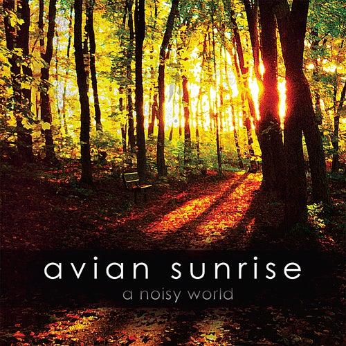 A Noisy World by Avian Sunrise