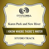 I Know Where There's Water (Studio Track) by Karen Peck & New River
