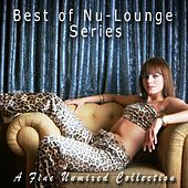 Best of Nu-Lounge Series (An Unmixed Collection) by Various Artists