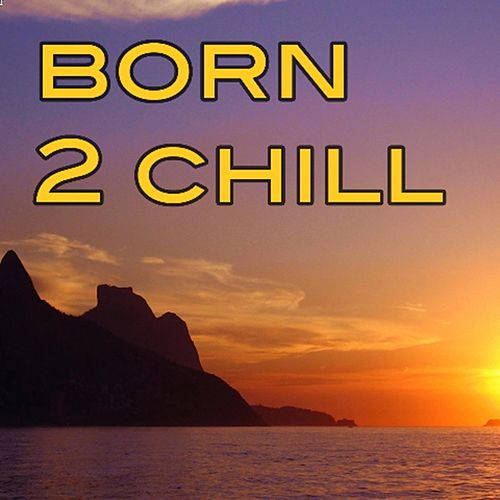 Born 2 Chill by Various Artists