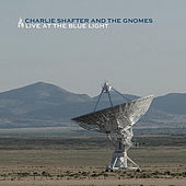 Live At The Blue Light by Charlie Shafter
