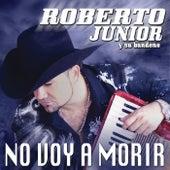 No Voy A Morir by Roberto Junior