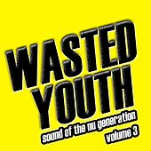 Wasted Youth, Vol. 3 von Various Artists