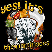 Yes! It's The Flamingos by The Flamingos