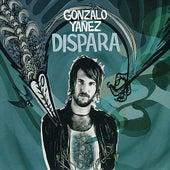 DIspara de Gonzalo Yañez