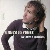 De Ida y Vuelta. de Gonzalo Yañez