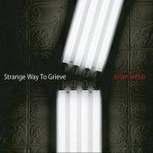 Strange Way To Grieve by Brian Webb