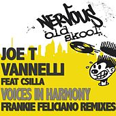 Voices In Harmony feat. Csilla by Joe T. Vannelli