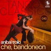 Che, bandoneon by Anibal Troilo