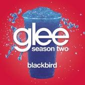 Blackbird (Glee Cast Version) by Glee Cast