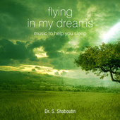 Flying In My Dreams - Music To Help You Sleep by Dr. Sergei Shaboutin
