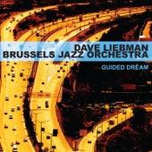 Guided Dream de Dave Liebman