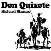 Don Quixote by Philharmonia Slavonica