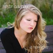 A New Love by Kristin Callahan