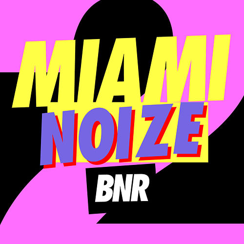 Miami Noize 2011 by Various Artists