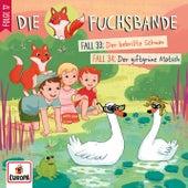 017/Fall 33: Der bebrillte Schwan / Fall 34: Der giftgrüne Matsch (018) by Die Fuchsbande