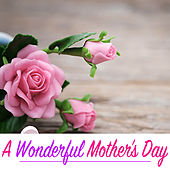 A Wonderful Mother's Day by Various Artists