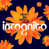 That's The Way Of The World von Incognito