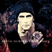 I Spit Roses von Peter Murphy