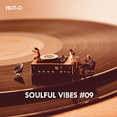 Soulful Vibes, Vol. 09 by Hot Q