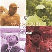 Wakztoubi #3 de 4Keus