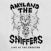 Control (Live at The Croxton) by Amyl and The Sniffers