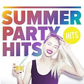 Summer Party Hits de Various Artists