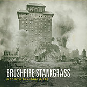 City of a Thousand Hills by Brushfire Stankgrass