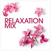Relaxation Mix de Various Artists