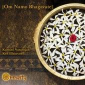 Om Namo Bhagavate by Ken Elkinson