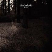 Shine von Louderbach