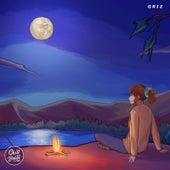 Quiet Midnight de GRiZ