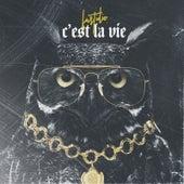 C'est la vie by Fast Idio