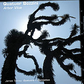 Arbor Vitæ by Quatuor Bozzini