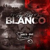 El Rey del Oro Blanco de Banda la Única del Rancho