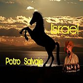Potro Salvaje by Israel Houghton