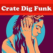 Crate Dig Funk de Various Artists
