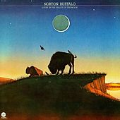 Lovin' In The Valley Of The Moon by Norton Buffalo