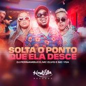 Solta o Ponto Que Ela Desce de DJ Pernambuco