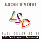 Lake Shore Drive Chicago by Aliotta Haynes Jeremiah
