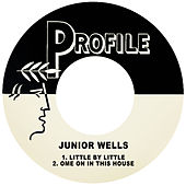 Little by Little / Come on in This House von Junior Wells