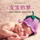 宝宝的梦 (让婴幼儿入睡的轻柔、舒缓的放松音乐) by Gomer Edwin Evans