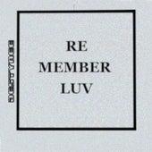 Re Member Luv by Destynee
