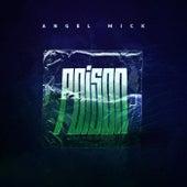 Poison de Angel Mick