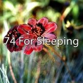 74 For Sleeping de Sleepicious